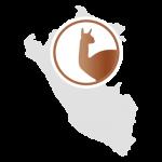 LaNOOS - Alpakawolle Peru