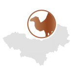 LaNOOS - Kamelwolle Mongolei