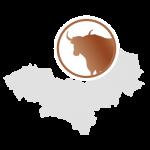LaNOOS - Yakwolle Mongolei